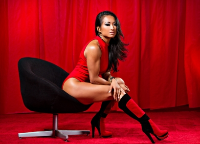 Gail Kim (Wrestler of the Year, 2013)
